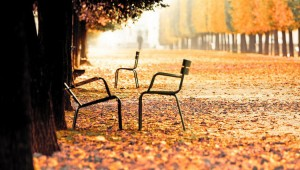 paris-in-fall-chairs